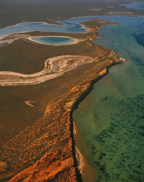 Big Lagoon, aerial photograph from 1200 metres. A shallow bay created by the sea inundating old claypans, remnants of landlocked saline lakes present when ocean levels were higher. Francois Peron National Park, Shark Bay, Western Australia