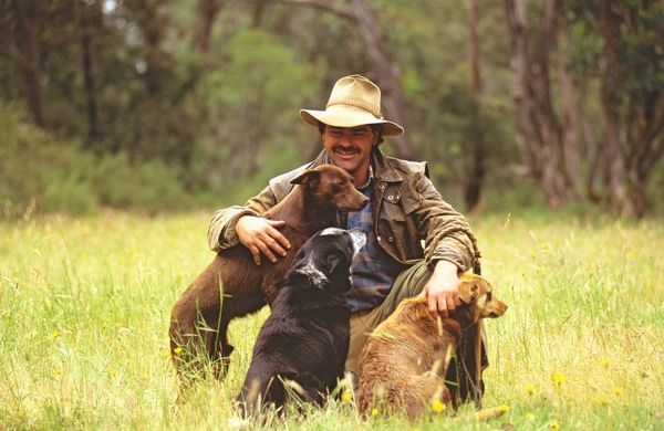 Cattleman with his working dogs, a kelpie and blue heeler cross. King Hut, Mansfield, Victoria, Australia