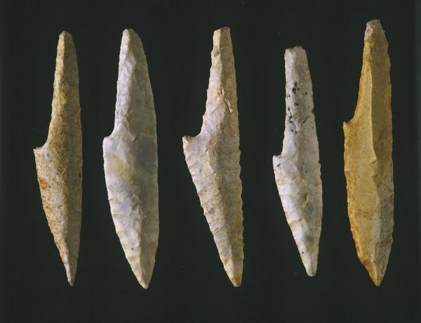 Cranted spear points of flint, Upper Paleolithic, Solutrean phase, 22 to 19 thousand years ago: elegant tools produced by heating and suddenly cooling flint stones so as to make them shatter in controlled ways. National Archaeological Museum