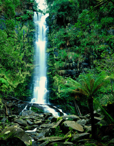 Erskine Falls (30 metre drop), near Lorne. Angahook-Lorne Section, Great Otway National Park, Victoria, Australia