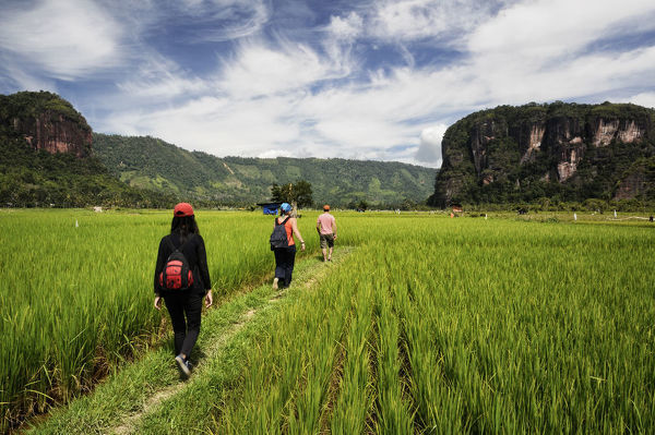 Hikers in the Harau Valley in the Minangkabau Highlands. The Valley is a nature reserve. where macaques and gibbons roam freely. Near Bukittinggi, West Sumatra, Indonesia