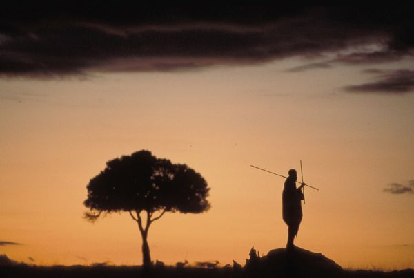 Masai tribesman silhouetted at dawn, standing on an old termite mound as vantage point, with spears. Masai Mara National Reserve, Kenya
