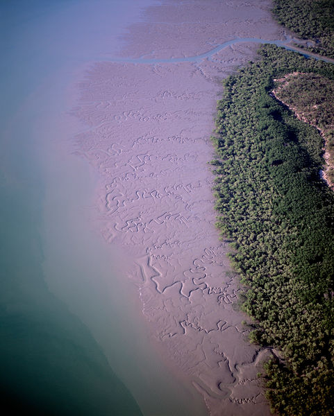 Prince Regent Nature Reserve, aerial showing St George Basin, a mangrove and saltwater crocodile habitat. Kimberley region, Western Australia
