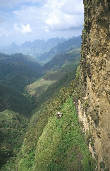 View from Chennek. The Park encompasses numbers of peaks over 4000 m with jagged profiles and precipices dropping 1500 m, formed by erosion of Simien Mountains plateau over aeons. Simien Mountains National Park, Ethiopia