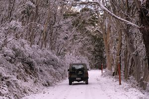 4WD vehicle on snow-covered road through forest