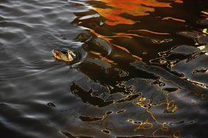 Abstract image of boat reflected in water surface,