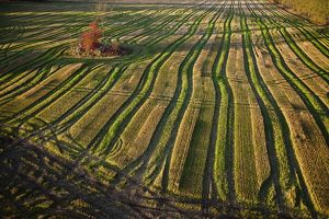 Aerial photograph of plough farmland,