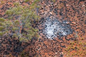 Ashes of a tree, blackened spinifex clumps, and destroyed fenceposts,