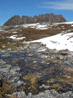 Cradle Mountain in spring,