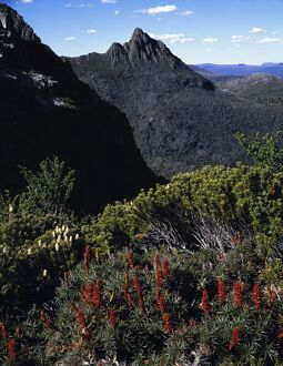 Cradle Mountain viewed from Marion's Lookout