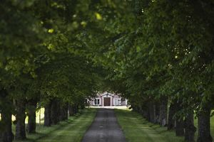 Driveway leading to Swedish farmhouse,