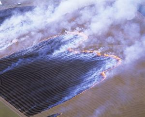 Farming practices: burning off stubble.