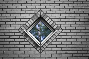 Forest reflected in a diamond shaped window,