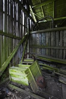 Interior of derelict boathouse with moss-covered beams,