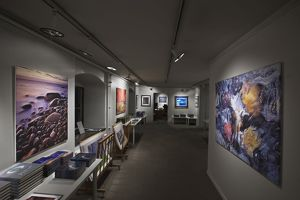 Interior of photographic gallery,