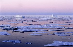 Landscape of sea ice at midnight,