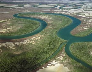 The Nassau River, about 8 km from the Gulf of Carpentaria as the crow flies, and roughly 20 km as a boat would negotiate the meanders.