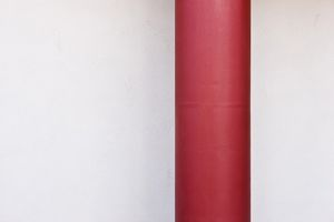 Red drainpipe against white wall.