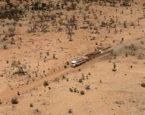 Road train on remote Australian highway, transporting livestock.