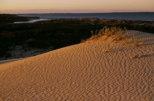 Sand dunes of Sandy Point at sunrise