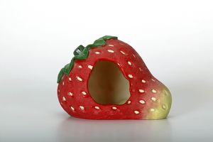 Toy strawberry for hamsters (Mesocricetus auratus)