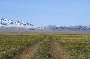 A track through steppes with the Gobi-Altai Mountains in the distance.