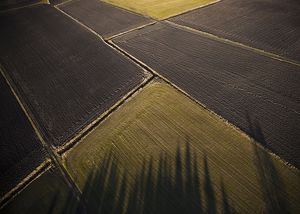 View of farmland from hot air balloon,