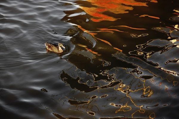 Abstract image of boat reflected in water surface