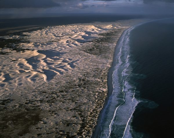 Coastal dunes between Wylie Scarp and Southern Ocean (Great Australian Bight)