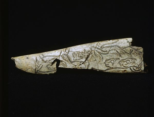 Engraved bone depicting birds and ibexes, from the Upper Paleolithic, 50 000 to 10 000 years old. Musee de Perigeux, Dordogne, France