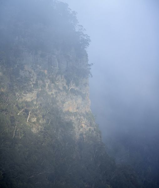 Thurat Range in early morning mist. Kanangra-Boyd National Park, New South Wales, Australia