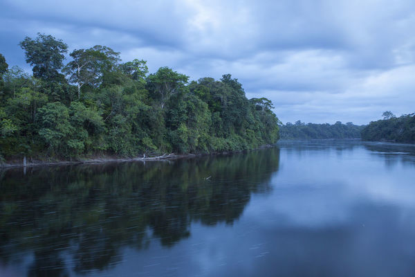 Tropical rainforest on the banks of the Araguari River at dusk. Amapa State, northern Brazil