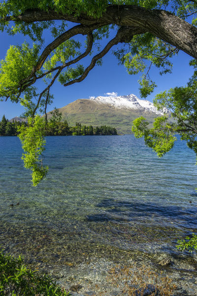 View over Lake Wakatipu to the Remarkables still capped with snow in November. Queenstown, Central Otago, South Island, New Zealand