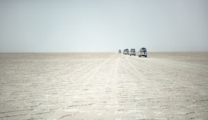 4WD vehicles driving across Lake Assal