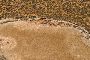 photographer galleries/nick rains/aerial view vegetation peron peninsula