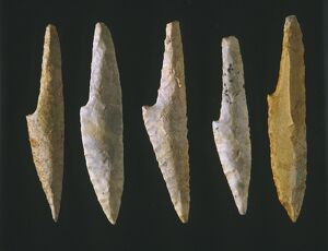 Cranted spear points of flint,