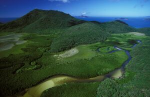 Hill Inlet with mangroves,