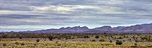 Mountains surrounding Wilpena Pound