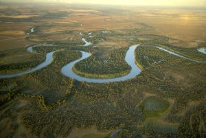 Murray River and its meanders