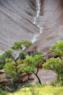 Runnel of rainwater down Uluru